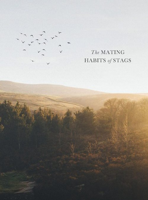 The Mating Habit of Stags by Ray Robinson (Lightning Books)