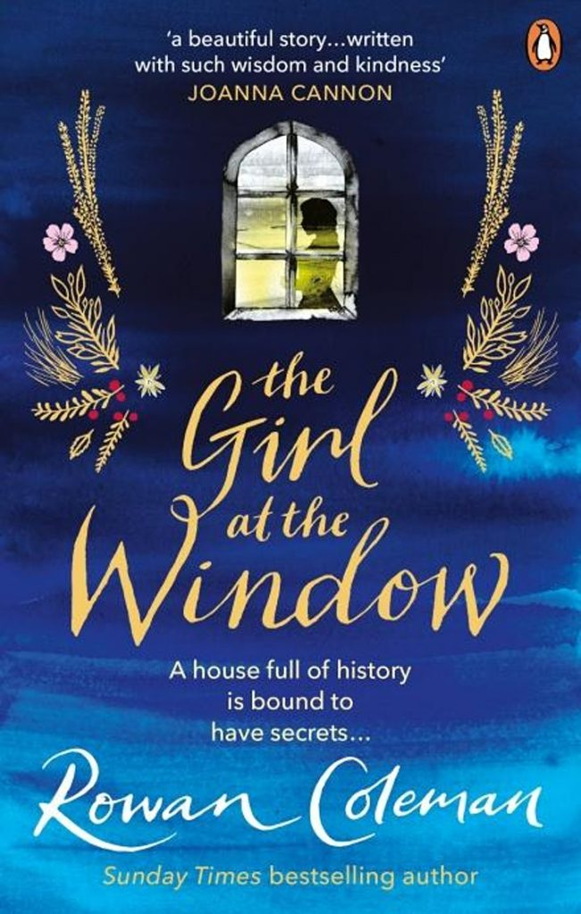 The girl at the window book cover image